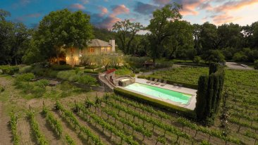 Saint Helena Vineyard, Saint Helena, CA